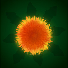 Art with sunny orange flower dandelion on beautiful background with leaves