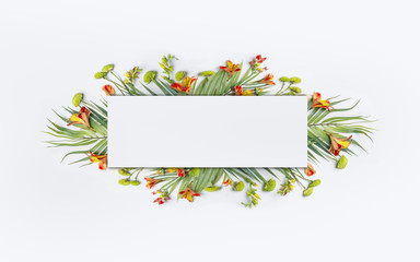 Wall Mural - Summer tropical creative design with  palm leaves and exotic flowers for banner or flyer on white background