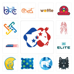 Set of democrat, wolf face, polar, pillow, warrior head, the elite, railway, long hair, generic icons