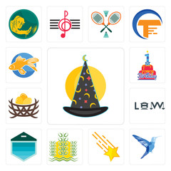 Set of wizard hat, colibri, shooting stars, paddy, garage door, law, bird nest, 1st birthday, goldfish icons