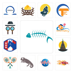 Set of fish skeleton, hot rod, med, chameleon, badminton, wizard hat, democratic party, 45th anniversary, private detective icons
