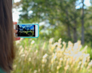 Over the shoulder shot of woman taking a pretty landscape photo of wilderness with her phone camera