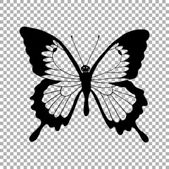 Vector silhouette of butterfly monarch. Transparent hand drawn illustration