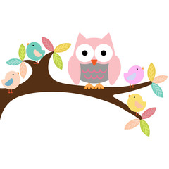 Owl on a branch with birds
