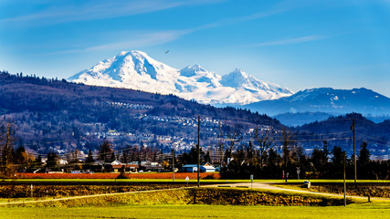 The snow covered  top of Mount Baker dominant over a Fraser Valley farm seen from the Matsqui Dyke at the towns of Abbotsford and Mission in British Columbia Fototapete