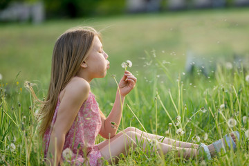pretty little girl blowing a dandelion on a summer day in the park