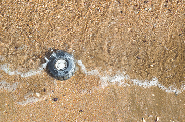 Plastic wheel from a toy in the sea sand on the shore