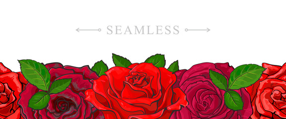 Red roses border seamless pattern with romantic hand drawn flower blooms isolated on white background - beautiful floral vector illustration with rose blossom in sketch style.