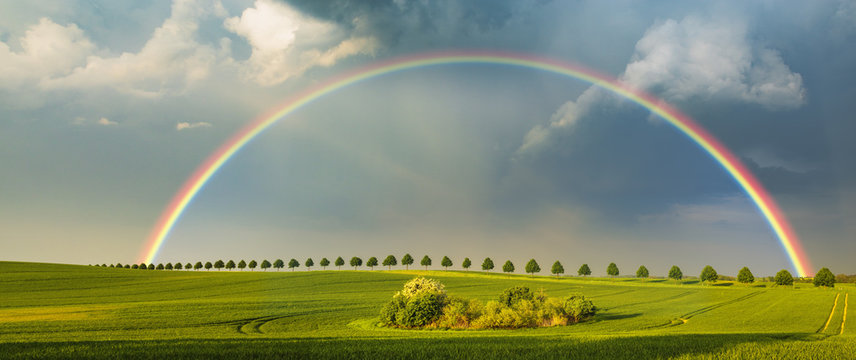 rainbow over the spring field