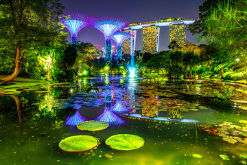 Spectacular skyline of Gardens by the Bay with blue and violet lighting and modern skyscraper reflecting in water lily pond by night. Marina bay area in Central Singapore, Southeast Asia.