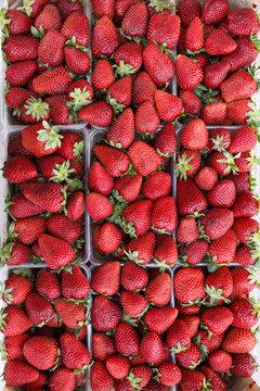 Ripe strawberies background.