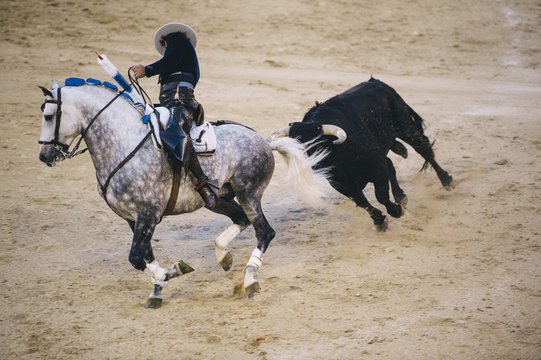 Corrida. Matador and horse Fighting in a typical Spanish Bullfight