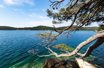 Beautiful landscape scene with turquoise color of water at lake on Mljet island.Croatia