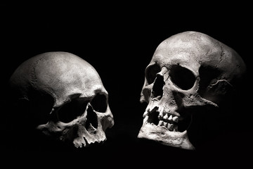 Human skulls on a black background. Drama concept
