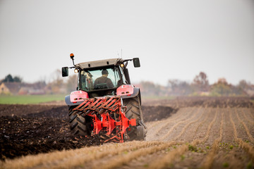Wall Mural - Farmer plowing stubble field
