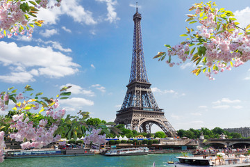 Printed roller blinds Europa eiffel tour over Seine river
