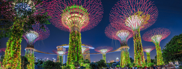 Foto op Plexiglas Tuin Panorama of Gardens by the Bay with colorful lighting at blue hour in Singapore, Southeast Asia. Popular tourist attraction in marina bay area.
