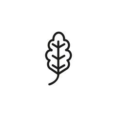 Oak leaf. Flat thin line illustration
