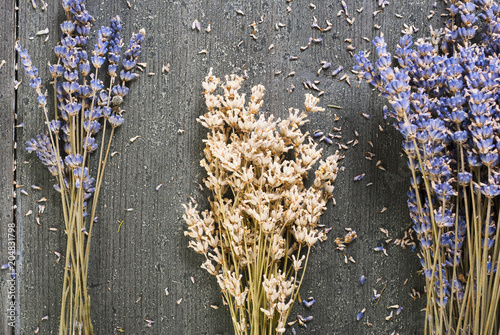 Dried lavender bunch variation on black wooden table