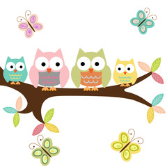 Four owls on a branch with butterflies