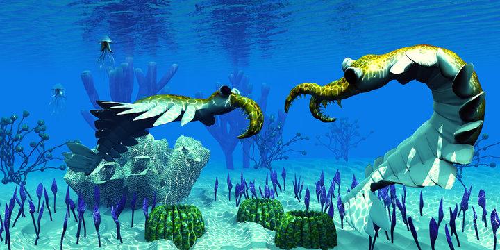 Anomalocaris in Cambrian Seas - Two predatory Anomalocaris invertebrates have a dispute over territorial rights over an ocean reef in Cambrian Seas.