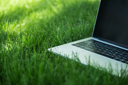 close up view of opened laptop with blank screen on green grass