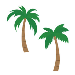 Set of vector palm illustrations, isolated on white background - Flat