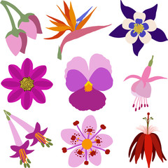 A Set of Colorful Flower Icons