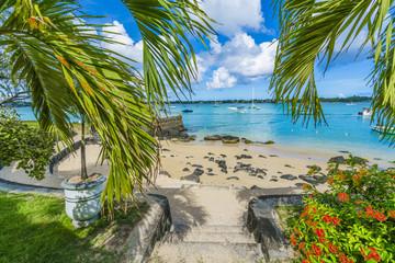 Wall Mural - Public beach at Grand baie, Mauritius island, Africa