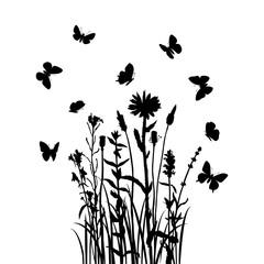Grass, flowers and butterflies