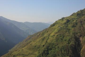 Steep hill with terraced fields. Ghandruk, Nepal.