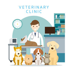 Male Veterinarian with Pets, Group of Cats and Dogs, Clinic or Hospital