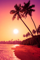 Foto op Plexiglas Asia land Palm trees on tropical beach at colorful pink tropic sunset