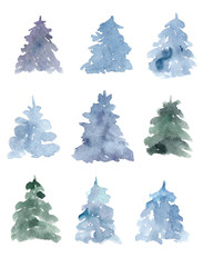 Watercolor collection of blue spruces.