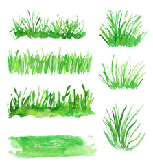 Watercolor set of grass. Several types of grass for design.