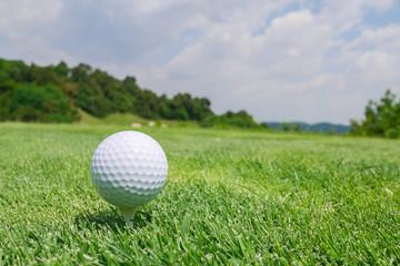 ゴルフボール ティーアップ