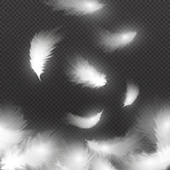 Falling white fluffy feathers on air isolated on black background. Easy symbol concept vector illustration