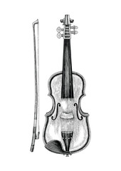 Violin hand skecth vintage style