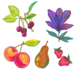 fruit set. Sketch markers fruits