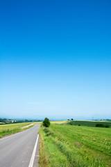 青空と田舎の一本道