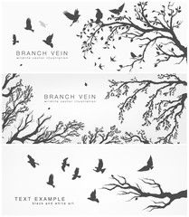 forest and birds banner for facebook vector Design