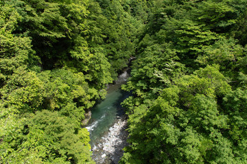 A river flowing through a country valley in Japan