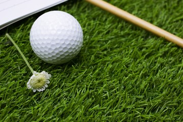 Golf diary with golf ball and pencil are on green grass