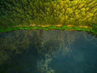 Aerial top down view over forest and lake