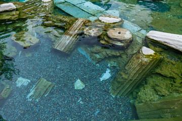 Drowned ruins of ancient city, Hierapolis near Pamukkale, Turkey