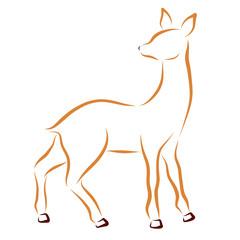 Sketch of a young deer or doe