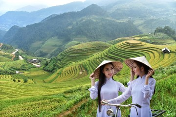 Two beautiful women with Vietnamese cultural dress, Ao dai and holding lotus flowers on rice fields on Mu Cang Chai, YenBai, rice fields prepare for harvest at Northwest Vietnam.