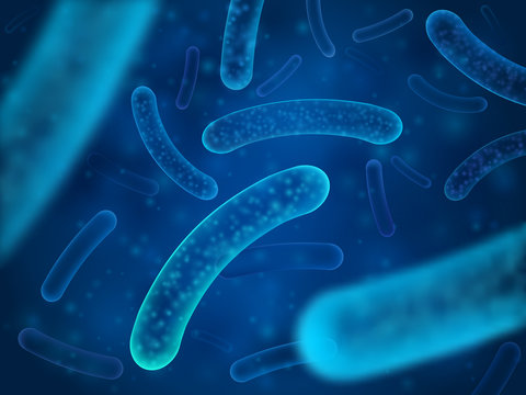 Micro bacterium and therapeutic bacteria organisms. Microscopic salmonella, lactobacillus or acidophilus organism vector background