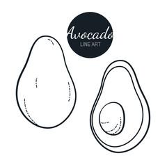 Avocado, vector line drawing.