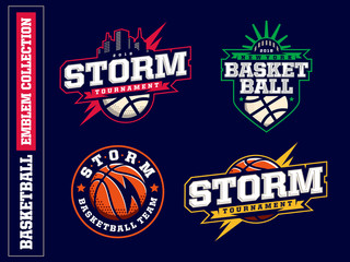Modern professional basketball logo set for sport team